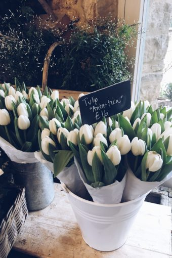 Daylesford farm shop/Cotswolds